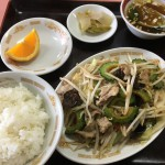 ゴーヤ野菜炒め定食(880)